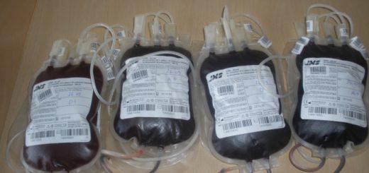 kako darivati krv